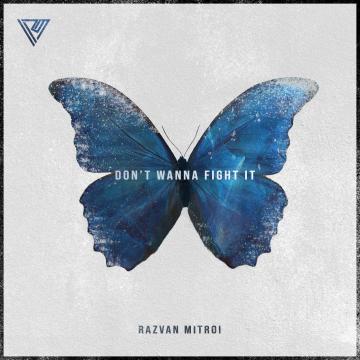 Razvan Mitroi - Don't Wanna Fight It Artwork