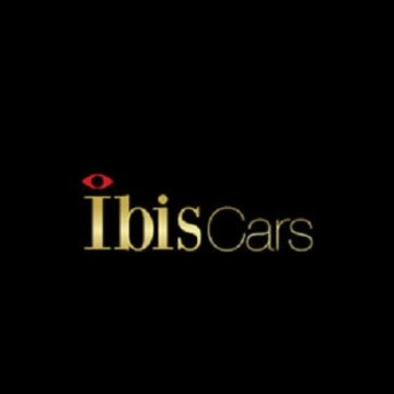 Ibis Cars - Private taxi hire London Artwork