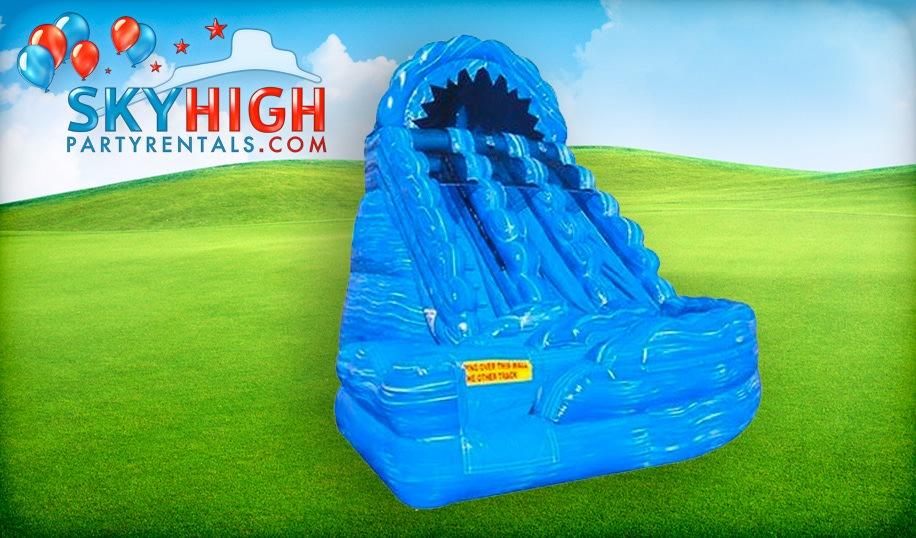 Inflatable Houston Dual Lane Slide
