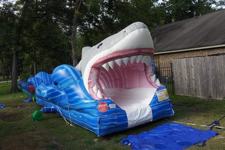 Shark Week Entertainment Rental