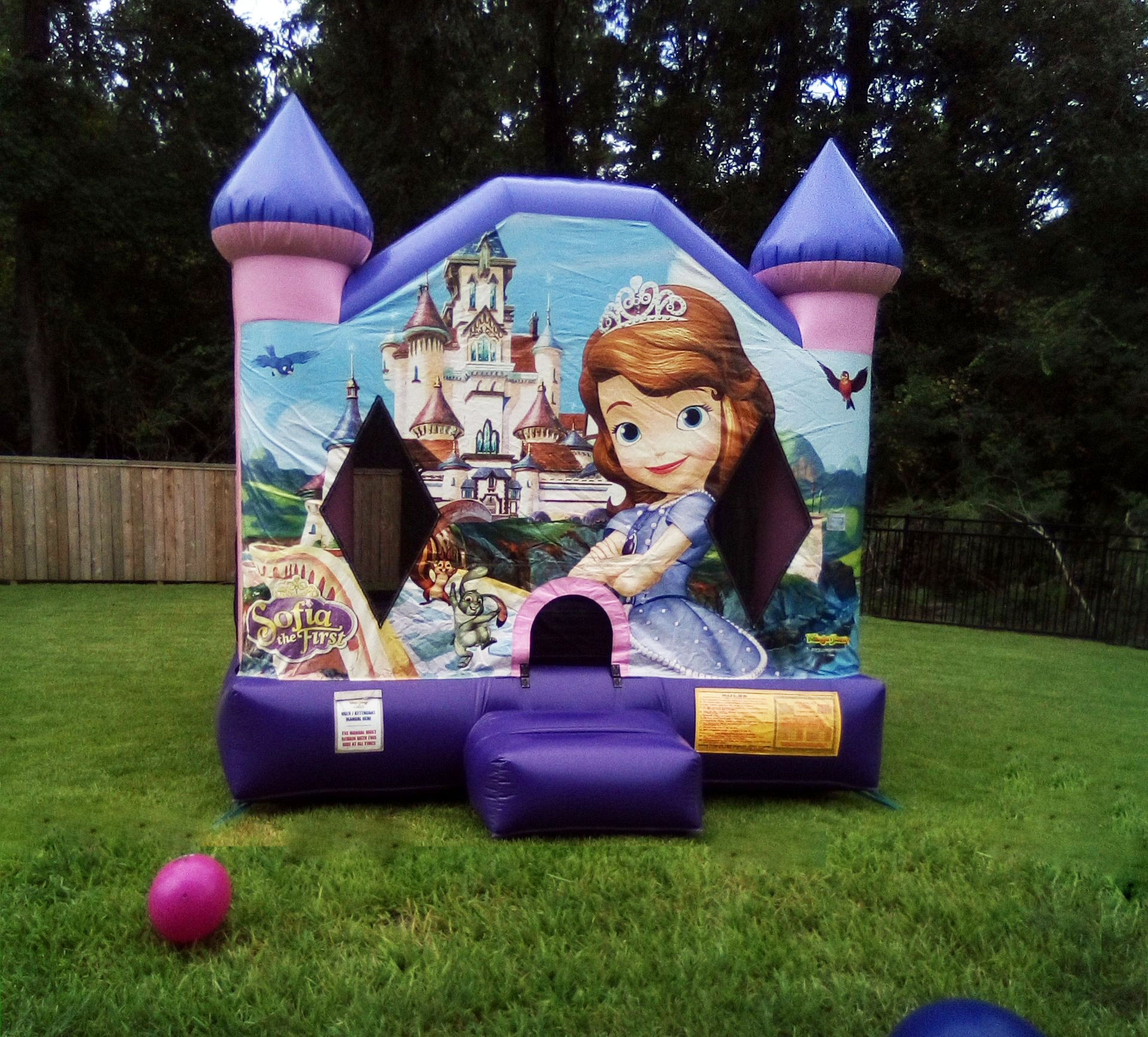 Sofia the First kids parties