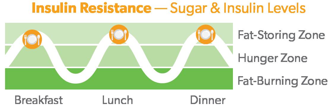 Sugar and Insulin Resistance Regular Diet