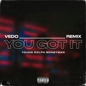 Album artwork for You Got It - Remix by VEDO