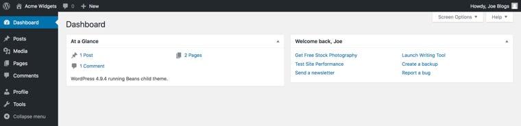 WordPress dashboard after