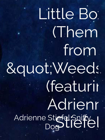 """Little Boxes (Theme from """"Weeds"""") (featuring Adrienne Stiefel)"""