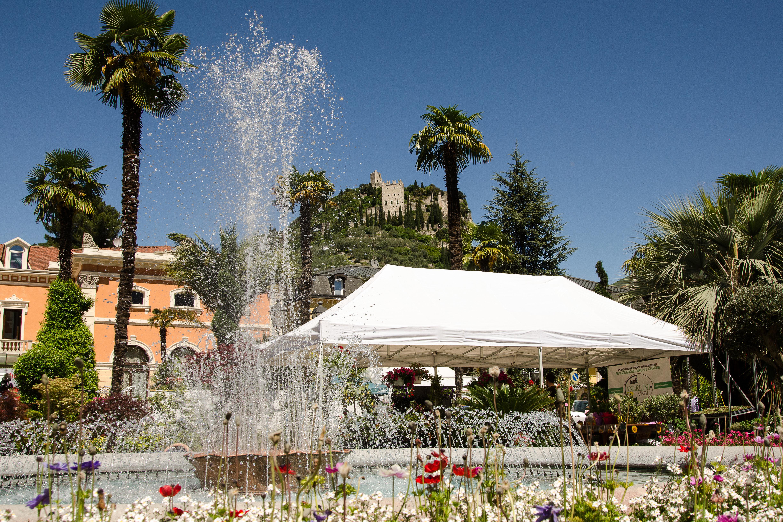 Arco plein met fontein