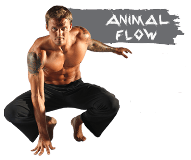 Master class de Animal Flow®