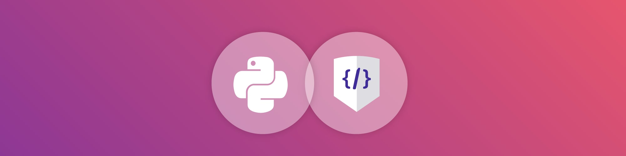 Snyk Code supports Python