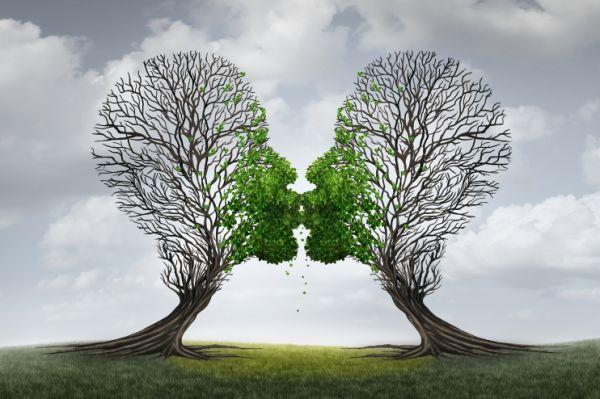 La Relation Client : une Relation Emotionnelle