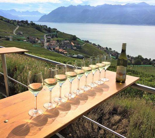 7 expériences à vivre autour des vins suisses