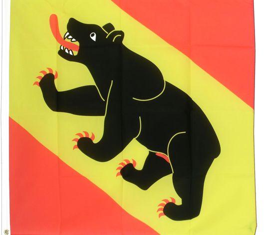 Je révise mon Suisse#8 – les ours à Berne, tout une histoire...