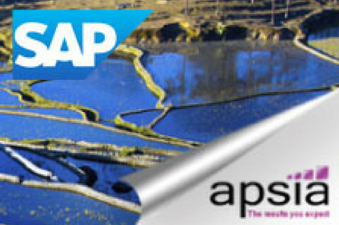 The results you expect from SAP ERP with APSIA !