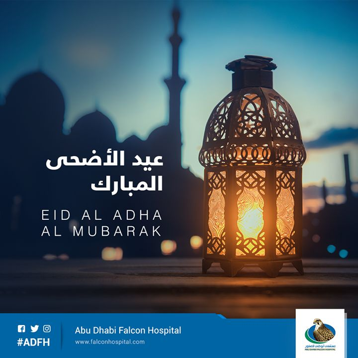 Home | Abu Dhabi Falcon Hospital