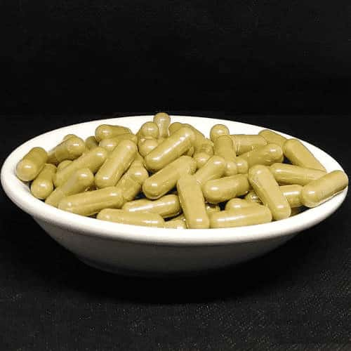 Yellow Bentuangie Kratom Capsules from Socratic Solutions