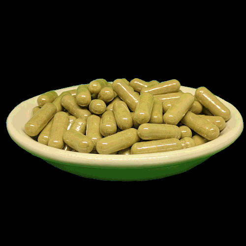 Red Bali Kratom Capsules from Socratic Soluitons