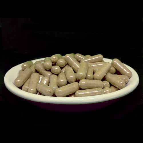 White Elephant Kratom Capsules from Socratic Solutions