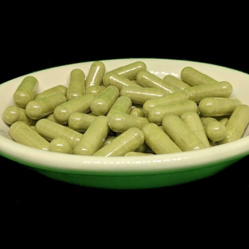 Green Sunda Kratom Powder from Socratic Solutions
