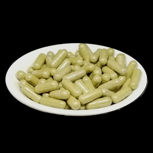 White Batak Kratom Capsules from Socratic Solutions