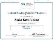 CSS Level 1