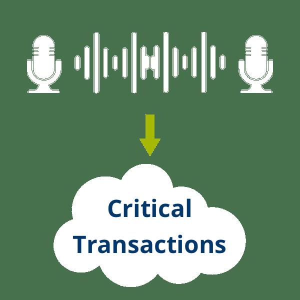 bic-critical-transactions