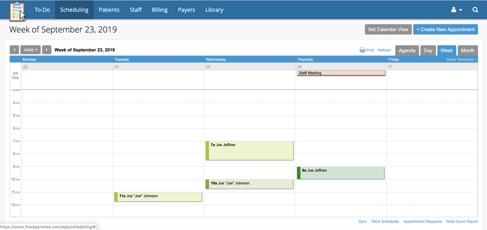 TherapyNotes Calendar