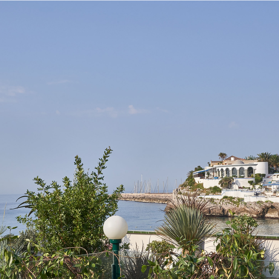 Vegetation on a terrace overlooking the sea.