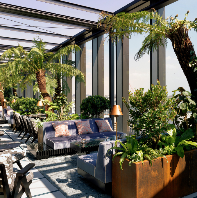 An indoor terrace with seating and large plants.