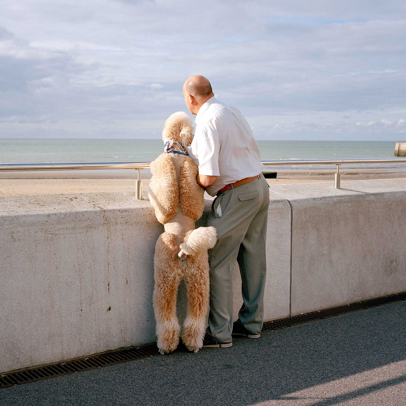 A man and a dog looking out to sea.