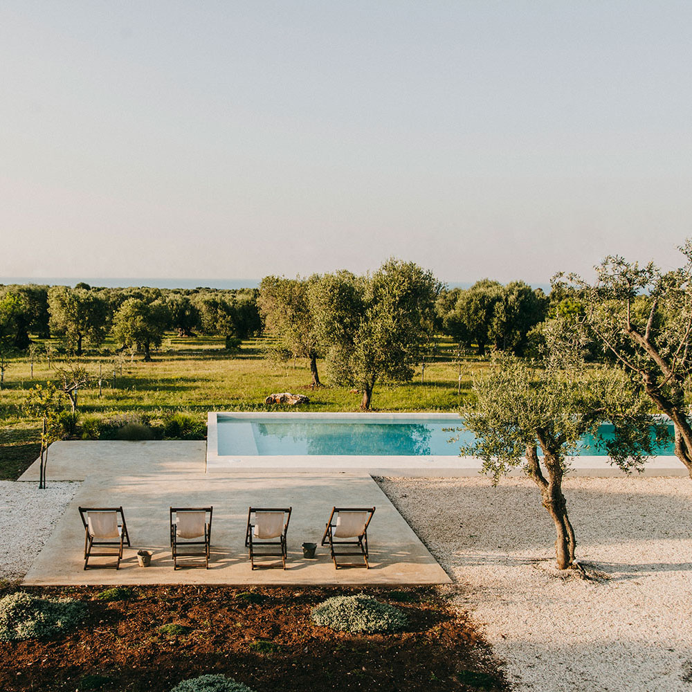 a pool in a vineyard