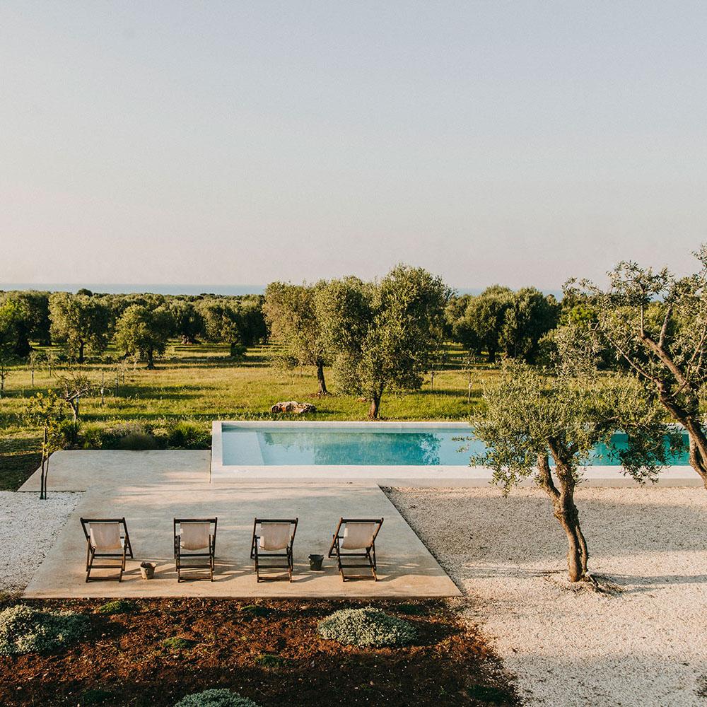 a pool in a vineyard