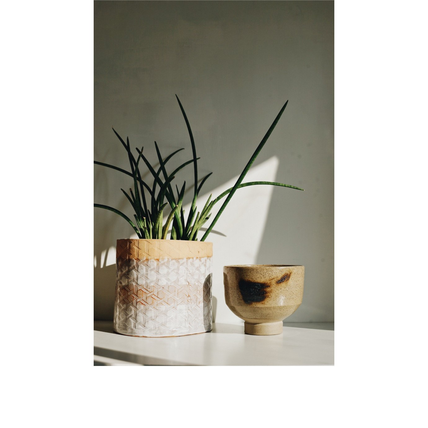 A ceramic bowl next to a plant in a ceramic vase.
