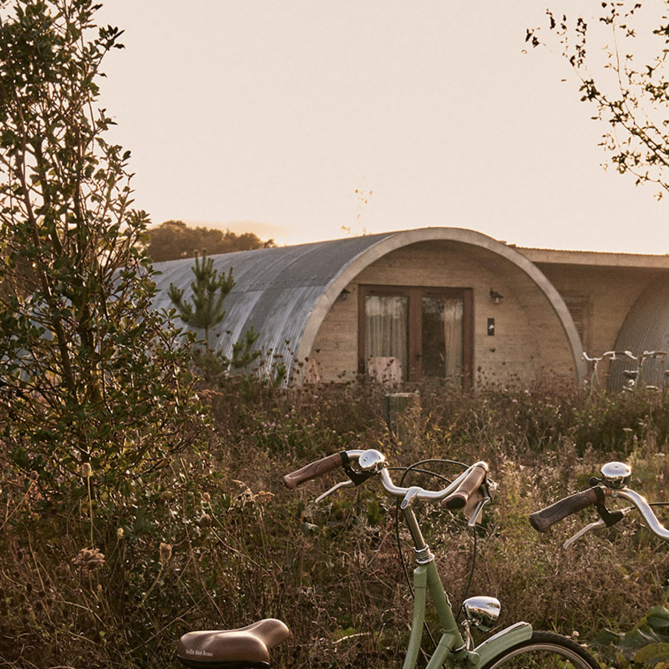 Two bikes and some vegetation in front of two dwellings at sunset.
