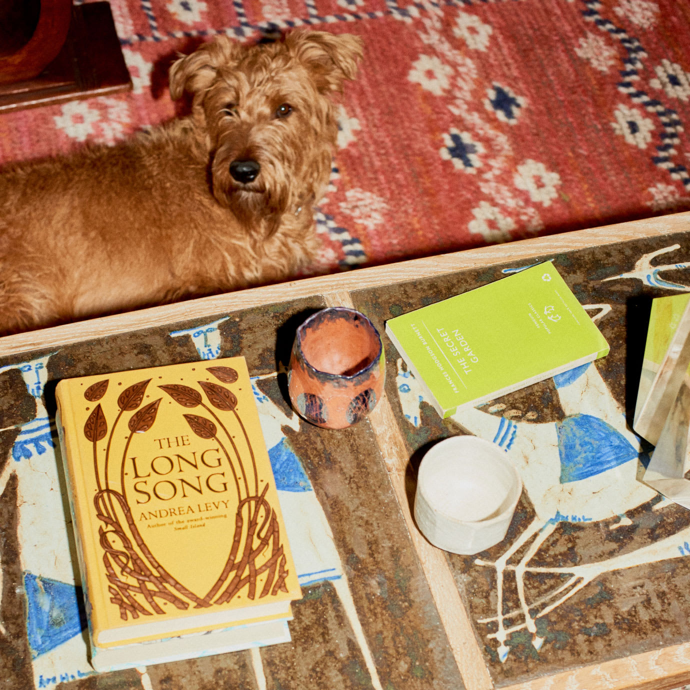 A dog on the floor next to a coffee table.