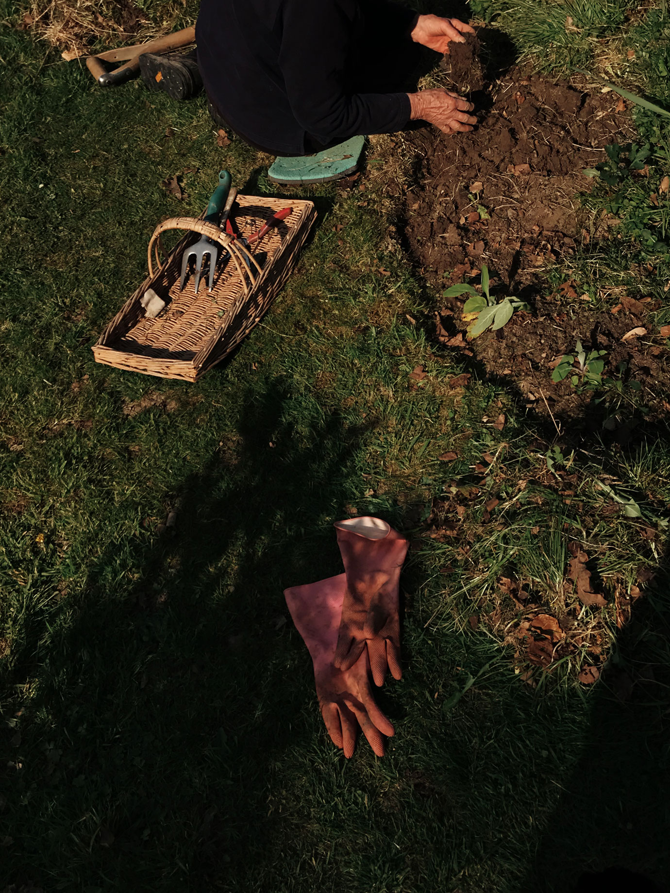 A person gardening.
