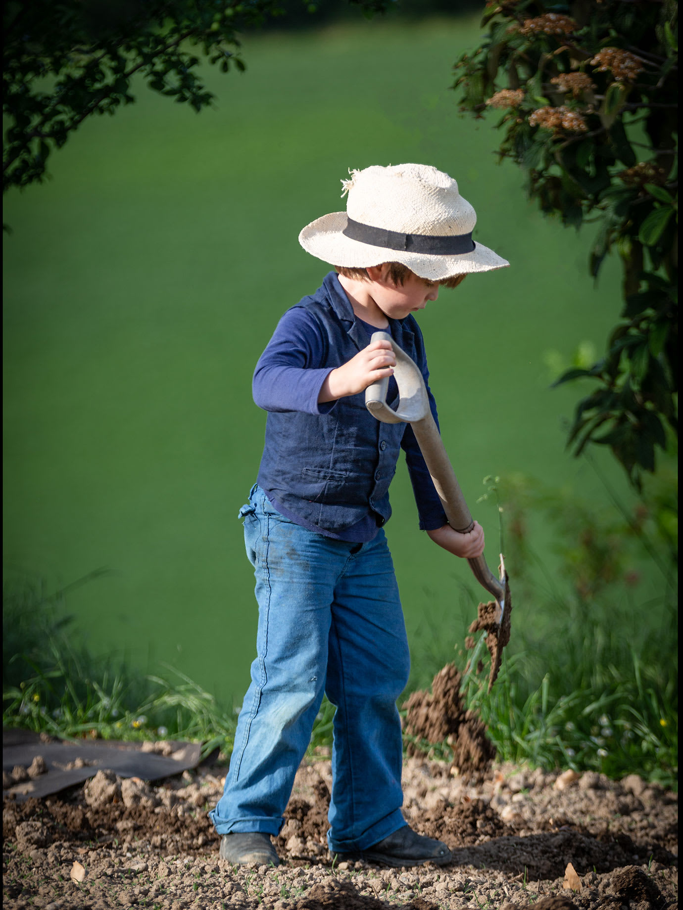A young boy raking a garden.