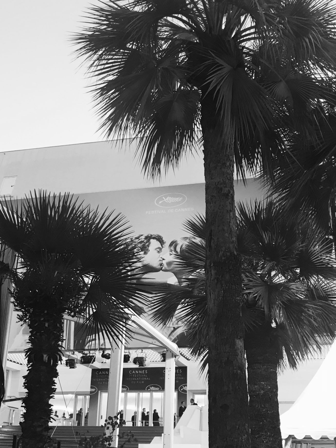 Red carpet, palm trees and a large poster with Cannes Film Festival written on it.