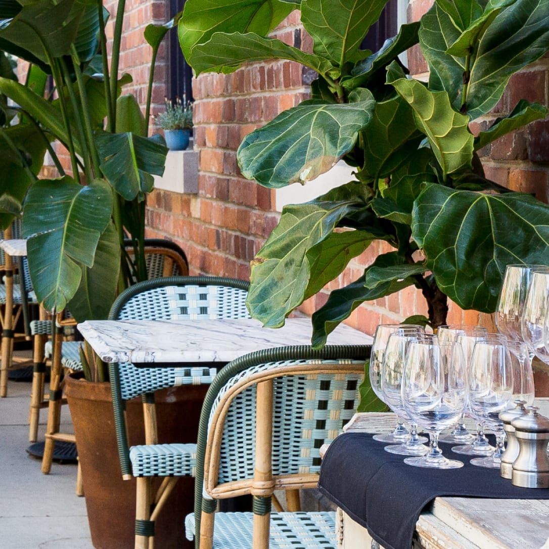 Outdoor seating surrounded by plants.