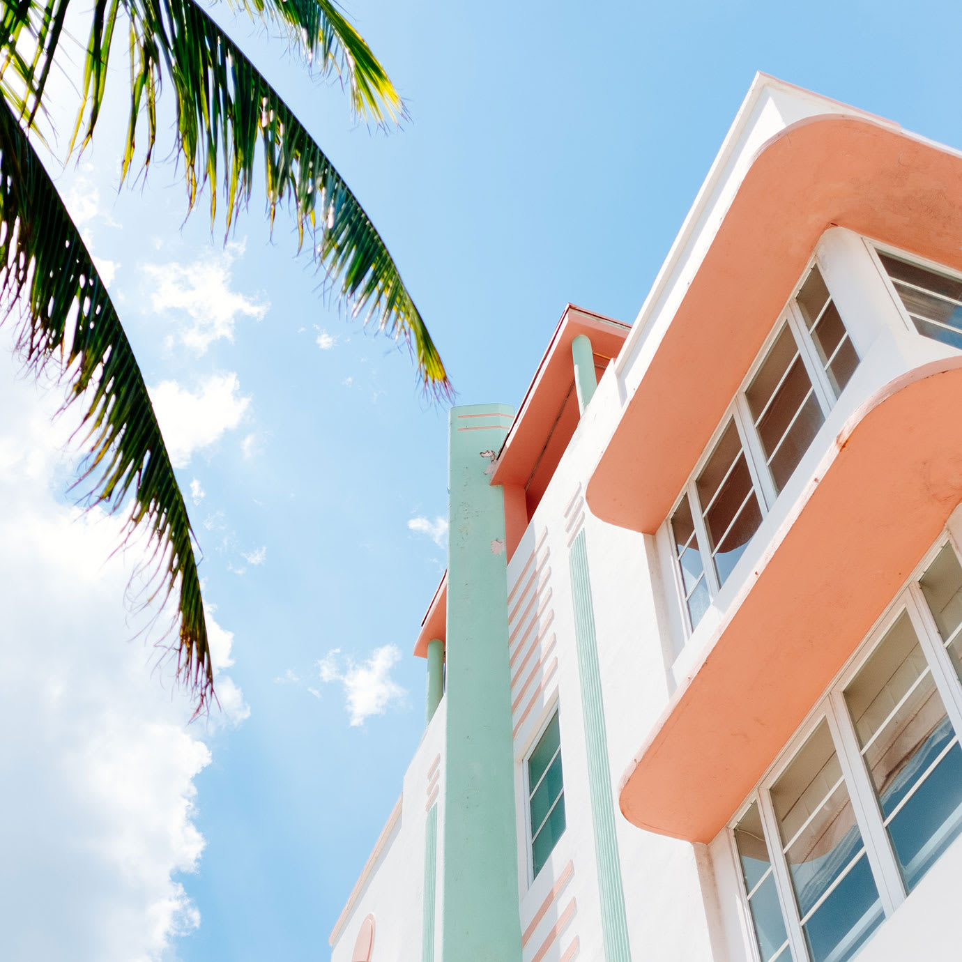 A colourful art deco building and a palm tree.