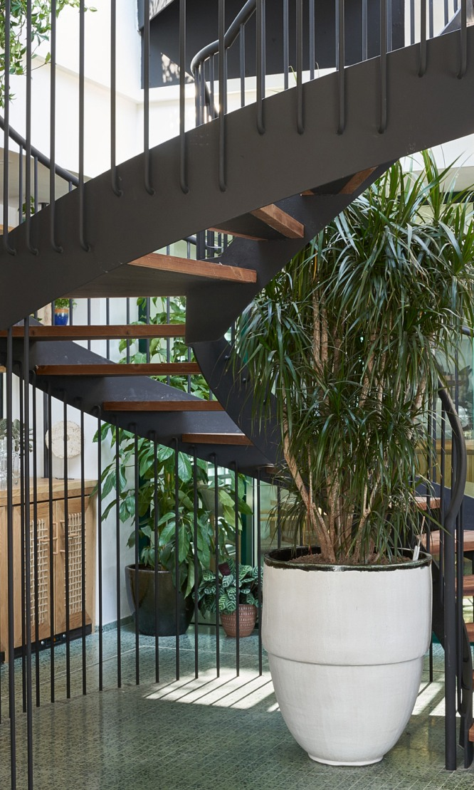 An indoor spiral staircase.