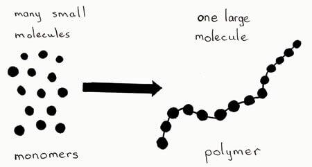monomer in polimer