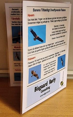 Praktisk Rovfugle Guide til salg i Proshoppen