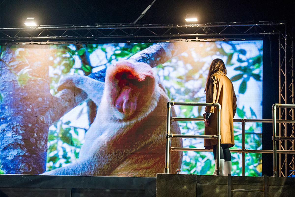 Sophie Stone in Herons at the Lyric Hammersmith (Photo: Tristram Kenton)