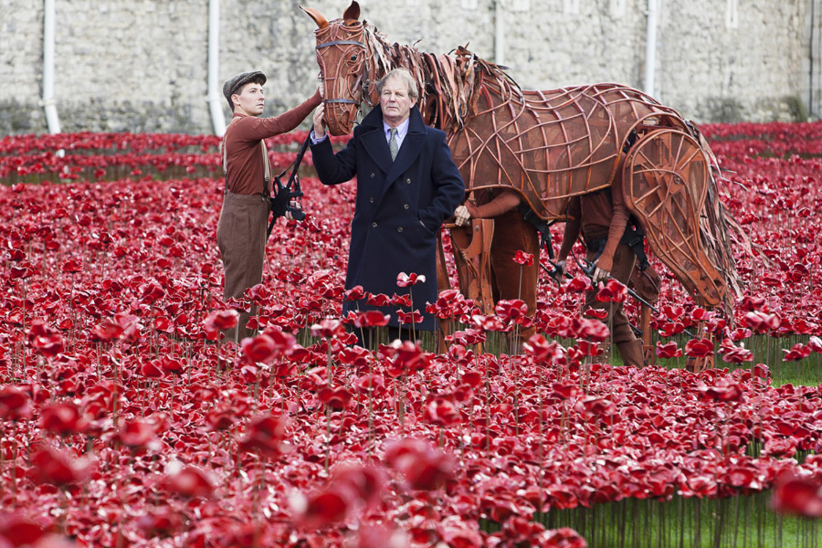 War Horse's Joey and author Michael Morpurgo at the Tower of London (Photo: Alex Rumford)