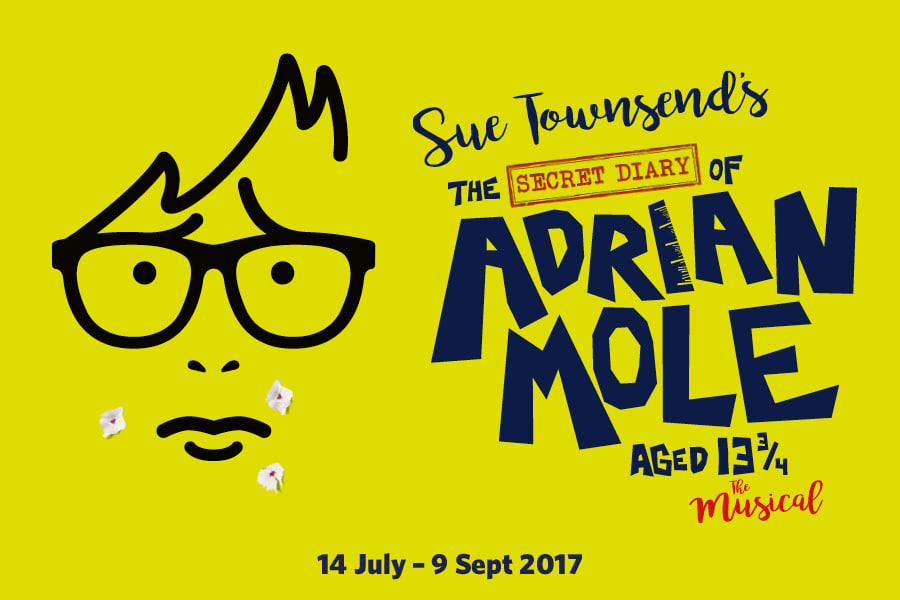 The Secret Diary of Adrian Mole Aged 13 ¾ - The Musical at the Menier Chocolate Factory