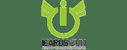 Icarus Sun