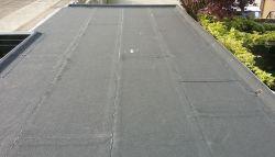 Plat dak dat strak is bedekt