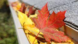 Dakgoot vol met bladeren
