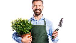 Hovenier helpt je graag met de tuin