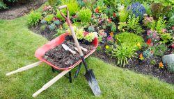 Kruiwagen in tuin met tuinonderhoud spullen
