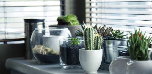 Een zomers interieur: de beste tips